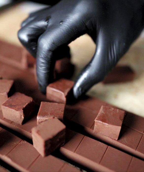 Chocolatier engagé à La Rochelle - Criollos Chocolatier