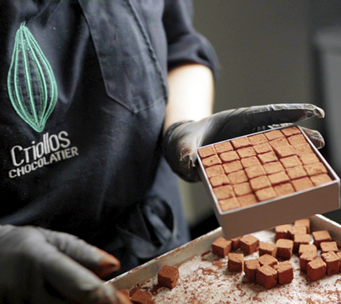 Pavés rochelais - Criollos Chocolatier