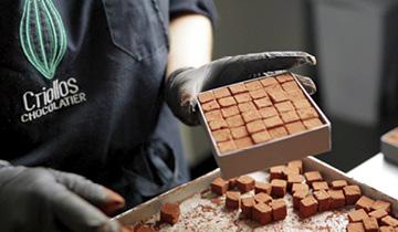 Pavés de La Rochelle par Criollos Chocolatier